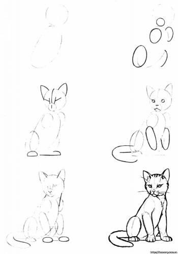 как рисовать животных карандашом: