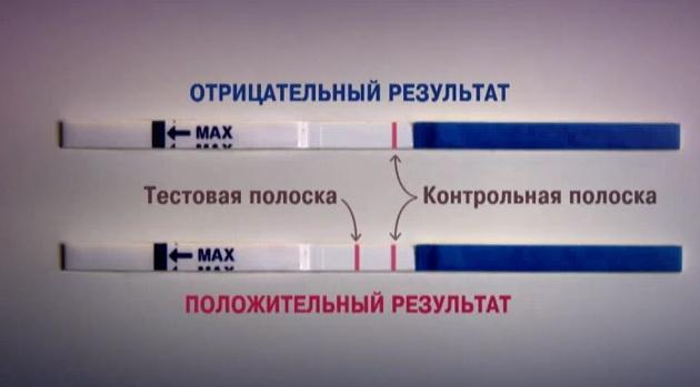 Приснились две полоски на тесте для беременности