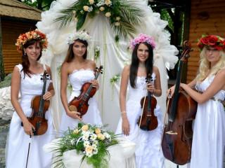 Где заказать артистов для свадьбы в Киеве?