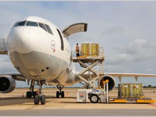 Авиаперевозки от компании «Деловые решения» – качественно и быстро