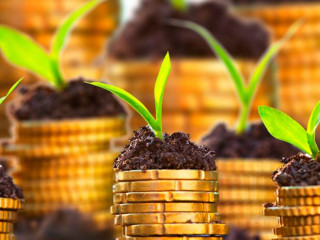 Как снизить риски в сельскохозяйственном бизнесе?