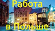 Работа в Польше: условия, вакансии, зарплаты