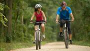 Почему так популярны велосипедные прогулки?