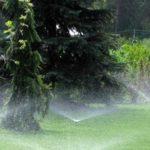 Чем удобна система автоматического полива газона на участке
