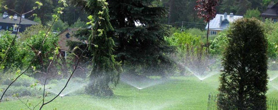 Чем удобна система автоматического полива газона на участке?